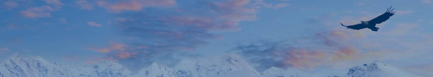 eagle over mountains